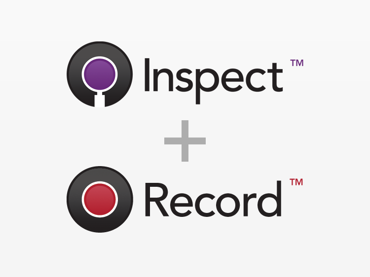 inspectrecord